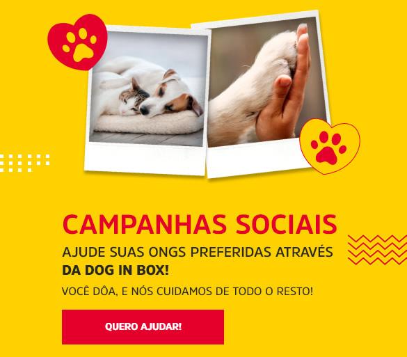 Campanhas Sociais Mobile